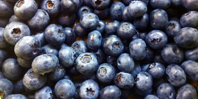 Blueberries are high in high anti-oxidants