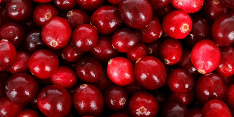 Cranberries are high in high anti-oxidants