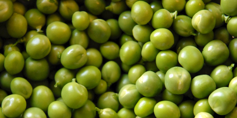 Peas are rich in folate